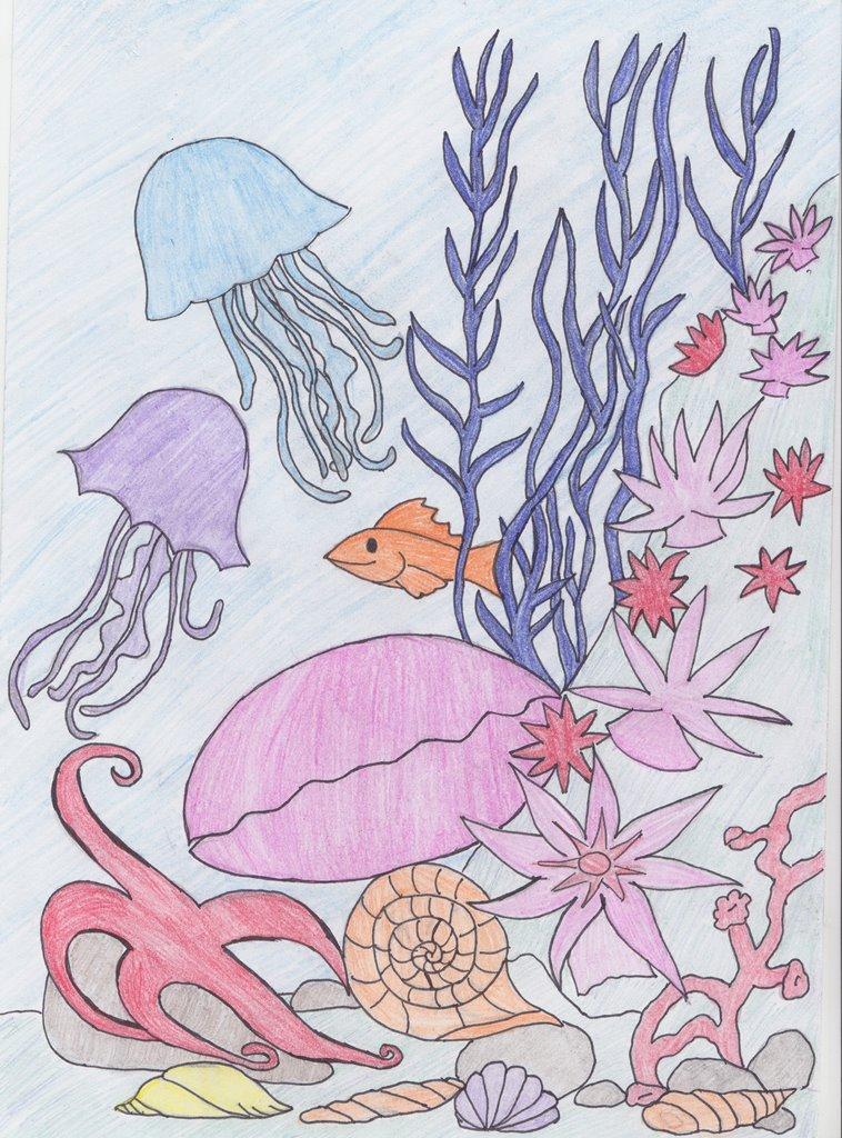 картинки подводный мир рисунки карандашом уже